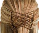 Ez Combs Sihirli Saç Tokası Topuz Toka 2 Adet Saç Şekillendirici