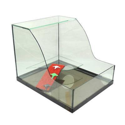 Kaplumbağa Bahçesi Cam Akvaryum XL